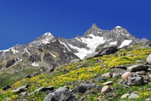 Alpenbild zur ALPEN-Methode